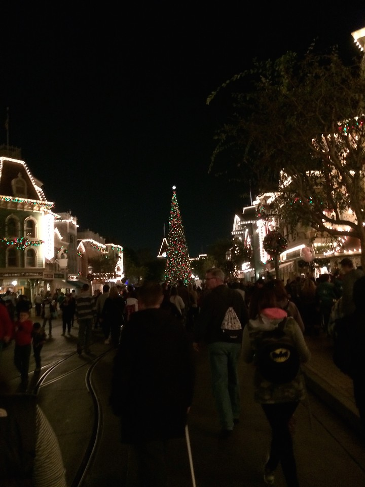Walking back through Main Street all lit up!