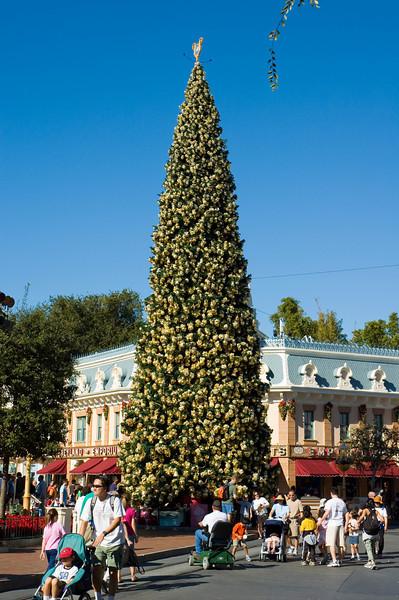 2005-11-20 - Disneyland - 005 - Disneyland Birthday 2005 - DSC_1421