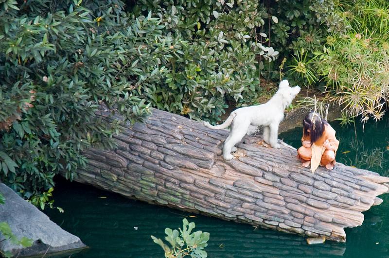 2005-11-14 - Disneyland - 012 - Disneyland Birthday 2005 - DSC_1404 - Kid with dog