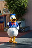 2005-11-20 - Disneyland - 011 - Disneyland Birthday 2005 - DSC_1429