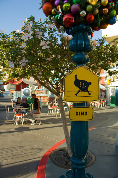 2007-11-14 - 164 - Disneyland Birthday - Toontown (Roasted Turkey Crossing) - _DSC9196
