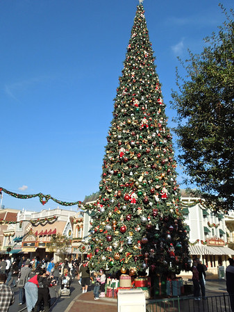 Disneyland 12/13/11