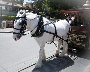 2012-05-10 Disneyland-9289
