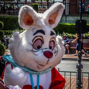 08-26-12 Disneyland-1000965