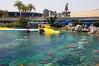 2007-06-13 - Disneyland - Nemo Opening Week - 027 - DSC_7057