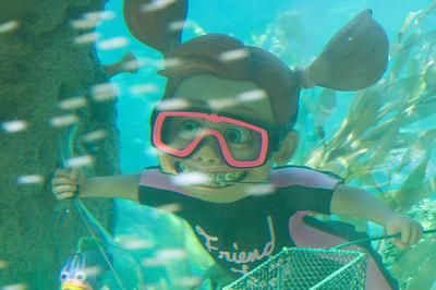 2008-03-15 - 319 - Disneyland - _DSC3046