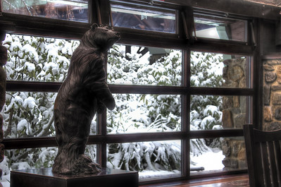 Snow Bear (Sequoia Lodge Hotel) - Stan