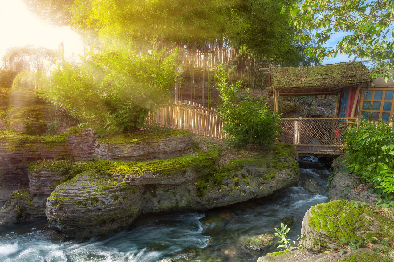 Disneyodendron's Entrance - Arthur