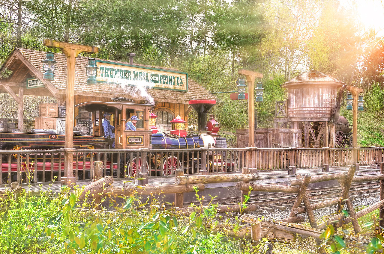 The Railroad at Frontierland Depot - Stan