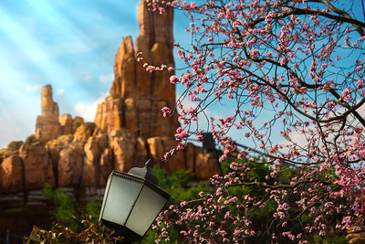 Spring over Frontierland