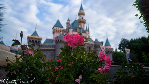 Disneyland Resort 10/18/14