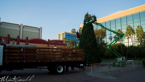 Disneyland Resort 10/31/14