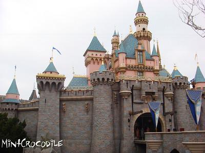 Disneyland Resort 2/13/08 - 10/15-09