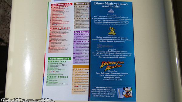 Disneyland Resort 1/11/13