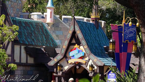 Disneyland Resort 3/6/13