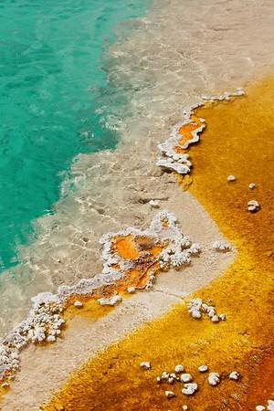 Detail in Black Pool, West Geyser Basin, Yellowstone National Park, WV. © 2013 Kenneth R. Sheide