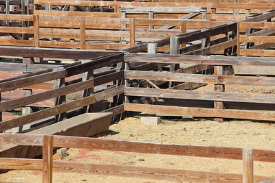 Pens at Fort Worth Stockyards, TX. © 2014 Kenneth R. Sheide