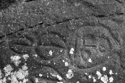 Wedding Rocks petroglyph, Cape Alava, Olympic National Park, Washington. © 2007 Kenneth R. Sheide