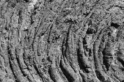 Lava detail at Craters of the Moon National Monument, ID. © 2013 Kenneth R. Sheide