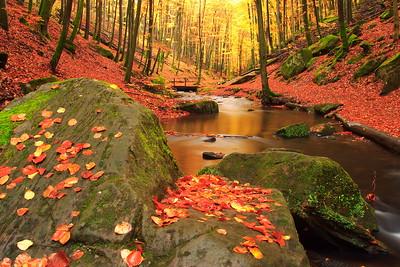 Karlstal Autumn Scene