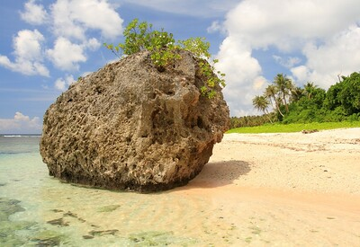 Large limestone boulder on Hilaan Beach, Guam. © 2008 Kenneth R. Sheide