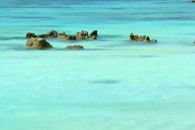 Limestone peeking above the surface at Shark Cove Beach, Guam. © 2008 Kenneth R. Sheide