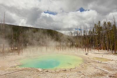 Cistern Spring, Norris Geyser Basin, Yellowstone National Park, WY. © 2013 Kenneth R. Sheide