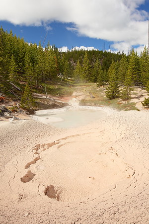 Thermal features in Artist Paint Pots area, Yellowstone National Park, WY. © 2013 Kenneth R. Sheide