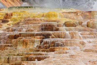 Travertine, Mammoth Hot Springs, Yellowstone National Park, WY. © 2013 Kenneth R. Sheide