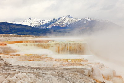 Travertine at Mammoth Hot Springs, Yellowstone National Park, WY. © 2013 Kenneth R. Sheide
