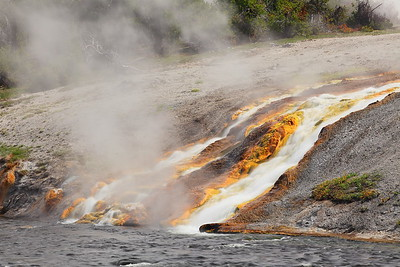 Thermal runoff into the Firehole River, Yellowstone National Park, WY. © 2013 Kenneth R. Sheide