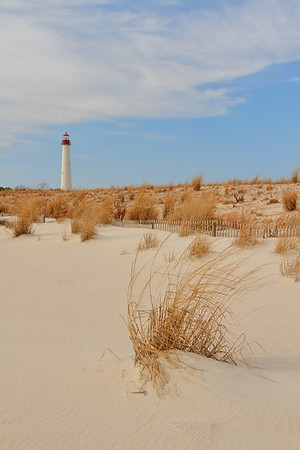 Vegetation and sand with the Cape May Lighthouse in the background.  Cape May, NJ. © 2011 Kenneth R. Sheide