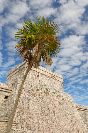 Palm and Castillo at Tulum, Quintana Roo, Mexico. © 2018 Kenneth R. Sheide