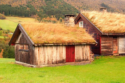 Grass-roofed buildings near Vik, Norway. © 2004 Kenneth R. Sheide