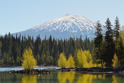 View of Mt Bachelor from Elk Lake, OR. © 2014 Kenneth R. Sheide