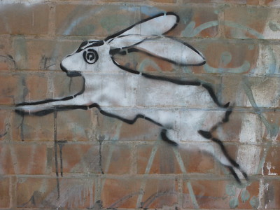 White rabbit graffiti on wall in Lima, Peru. © 2013 Kenneth R. Sheide