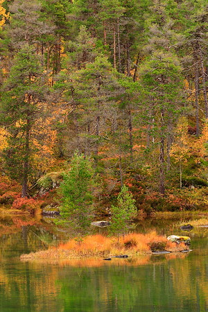 A small island in a lake near Sogndal, Norway. © 2004 Kenneth R. Sheide