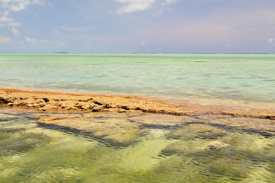 Old coral in water at Pau Pau Beach, Saipan, with Managaha Island visible in distance. © 2010 Kenneth R. Sheide
