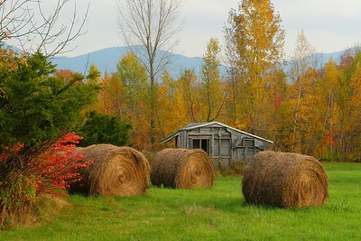 Autumn scene near South Cambridge, VT. © 2007 Kenneth R. Sheide