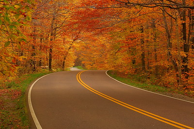 A twisty Vermont road through the autumn forest. © 2007 Kenneth R. Sheide