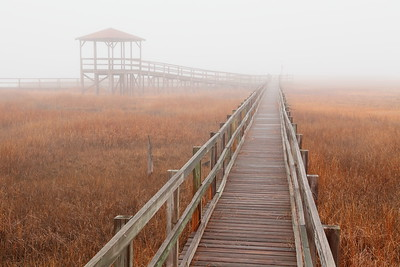 Marsh walkway in morning fog in Hampton, VA. © 2013 Kenneth R. Sheide