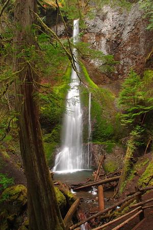 Marymere Falls, Olympic National Park, WA. © 2006 Kenneth R. Sheide