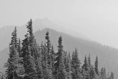 Mountain scenery near Hurricane Ridge, Olympic NP, WA. © 2017 Kenneth R. Sheide