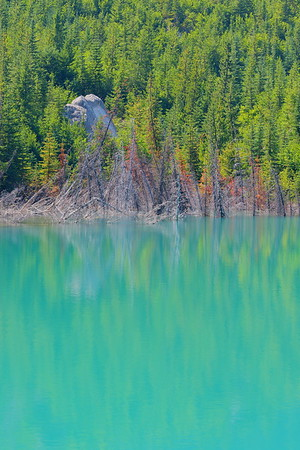 Emmons Lake shoreline, Mount Rainier NP, WA. © 2017 Kenneth R. Sheide