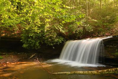 A shelf waterfall on Tumbling Creek near Saltville, VA. © 2019 Kenneth R. Sheide