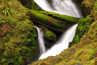 Detail of Bunch Falls in Olympic National Park, WA. © 2006 Kenneth R. Sheide