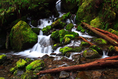The base of Merriman Falls, Olympic National Park, WA. © 2006 Kenneth R. Sheide