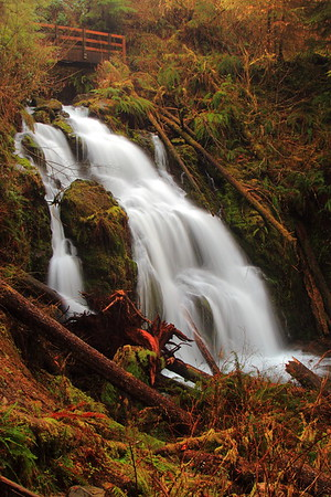 Cascade Falls near Lake Quinault. Olympic National Park, Washington. © 2007 Kenneth R. Sheide