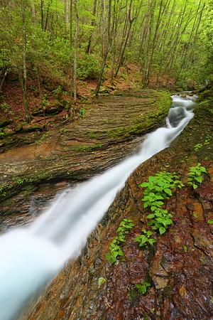 Water rushing through the Devil's Fork near Fort Blackmore, VA. © 2017 Kenneth R. Sheide