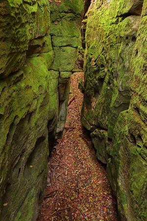 Narrow gap between moss-covered rocks. Beartown State Park, WV. © 2018 Kenneth R. Sheide